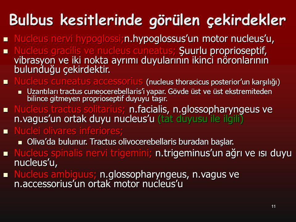 11 Bulbus kesitlerinde görülen çekirdekler Nucleus nervi hypoglossi;n.hypoglossus'un motor nucleus'u, Nucleus nervi hypoglossi;n.hypoglossus'un motor
