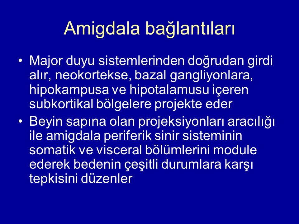 Amigdala bağlantıları Major duyu sistemlerinden doğrudan girdi alır, neokortekse, bazal gangliyonlara, hipokampusa ve hipotalamusu içeren subkortikal