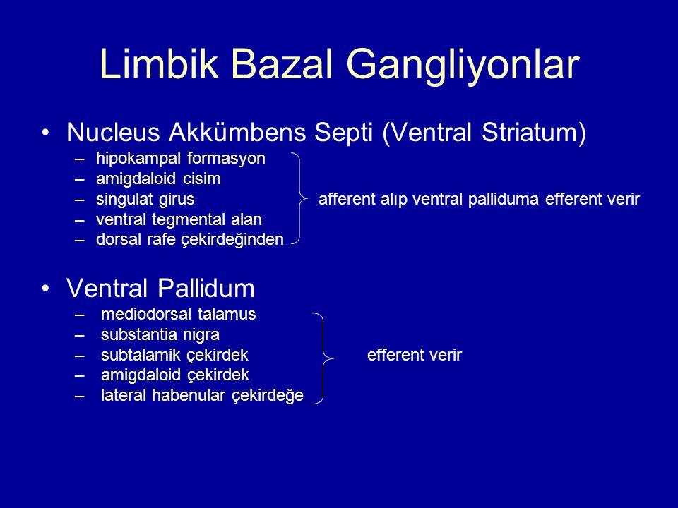 Limbik Bazal Gangliyonlar Nucleus Akkümbens Septi (Ventral Striatum) –hipokampal formasyon –amigdaloid cisim –singulat girus afferent alıp ventral pal