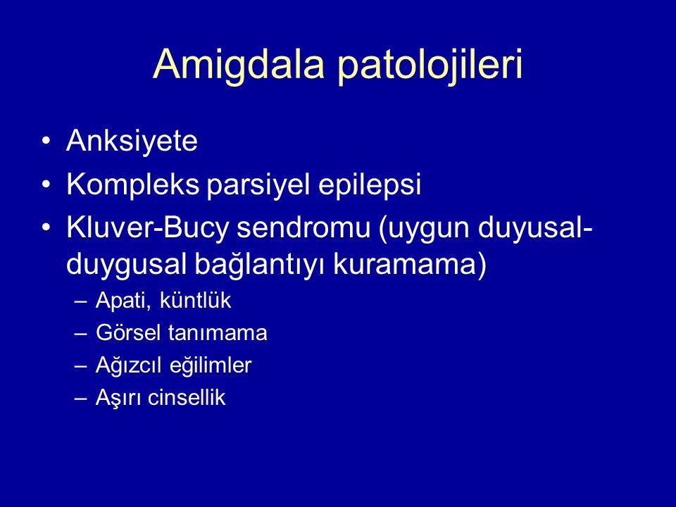 Amigdala patolojileri Anksiyete Kompleks parsiyel epilepsi Kluver-Bucy sendromu (uygun duyusal- duygusal bağlantıyı kuramama) –Apati, küntlük –Görsel