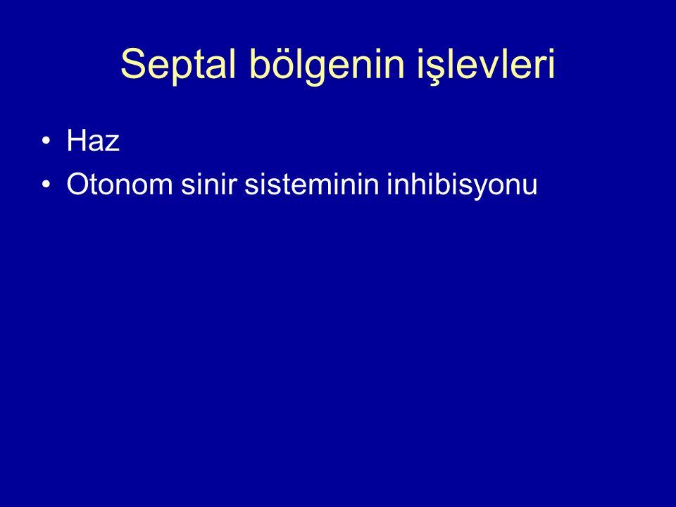 Septal bölgenin işlevleri Haz Otonom sinir sisteminin inhibisyonu