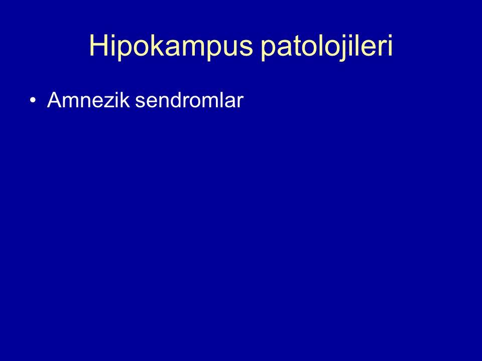 Hipokampus patolojileri Amnezik sendromlar