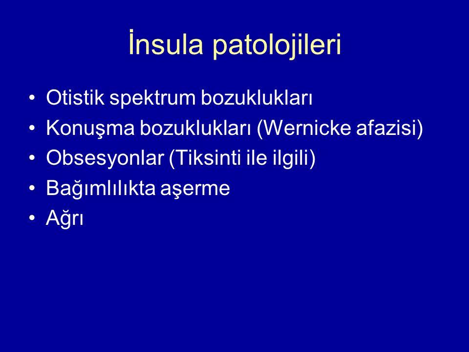 İnsula patolojileri Otistik spektrum bozuklukları Konuşma bozuklukları (Wernicke afazisi) Obsesyonlar (Tiksinti ile ilgili) Bağımlılıkta aşerme Ağrı