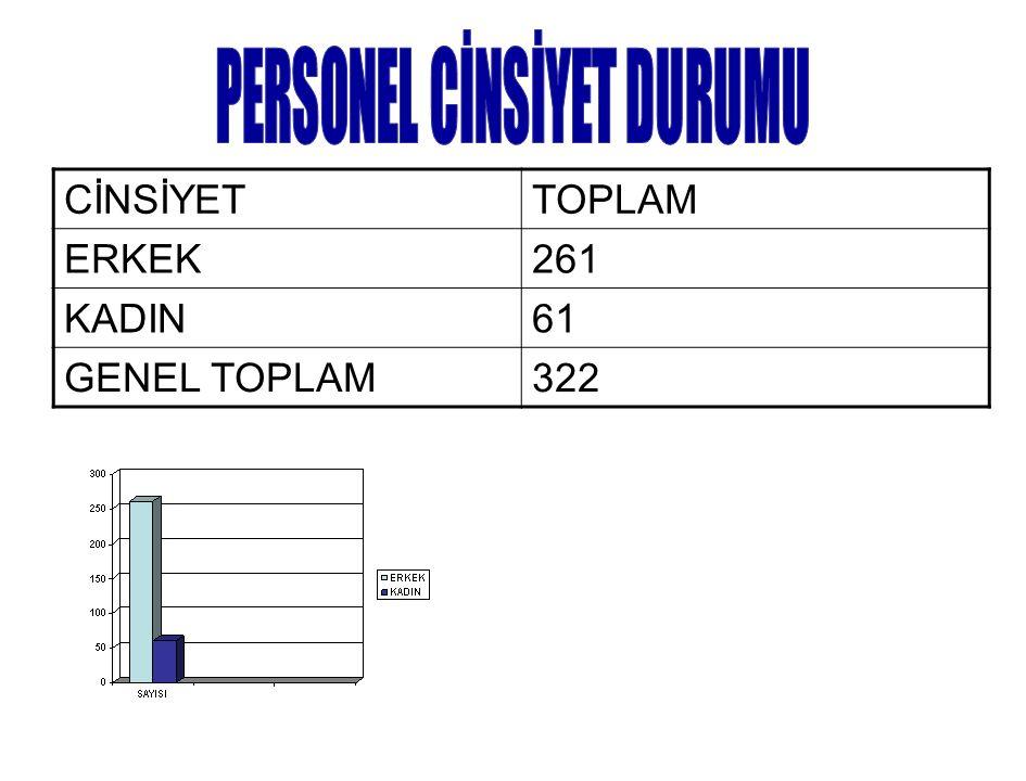 CİNSİYETTOPLAM ERKEK261 KADIN61 GENEL TOPLAM322