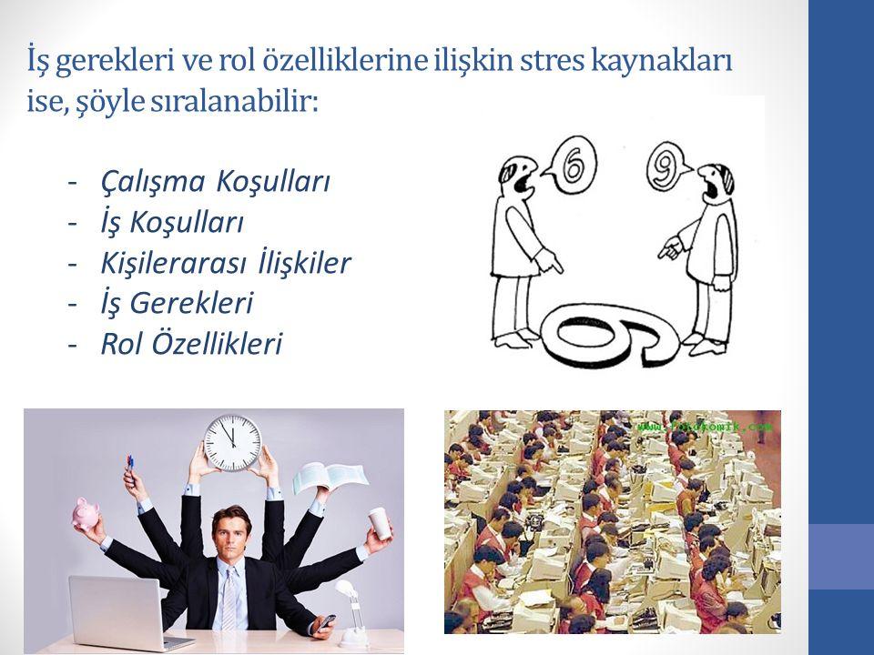 İş gerekleri ve rol özelliklerine ilişkin stres kaynakları ise, şöyle sıralanabilir: -Çalışma Koşulları -İş Koşulları -Kişilerarası İlişkiler -İş Gere