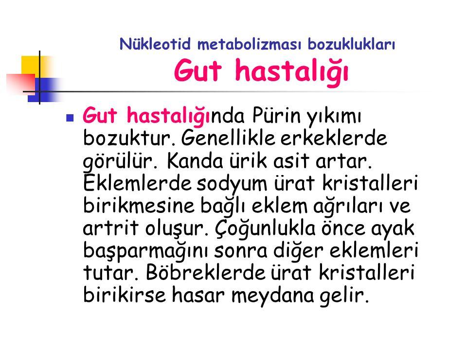 Nükleotid metabolizması bozuklukları Gut hastalığı Gut hastalığında Pürin yıkımı bozuktur. Genellikle erkeklerde görülür. Kanda ürik asit artar. Eklem