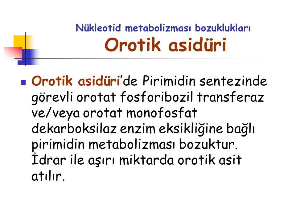 Nükleotid metabolizması bozuklukları Orotik asidüri Orotik asidüri'de Pirimidin sentezinde görevli orotat fosforibozil transferaz ve/veya orotat monof