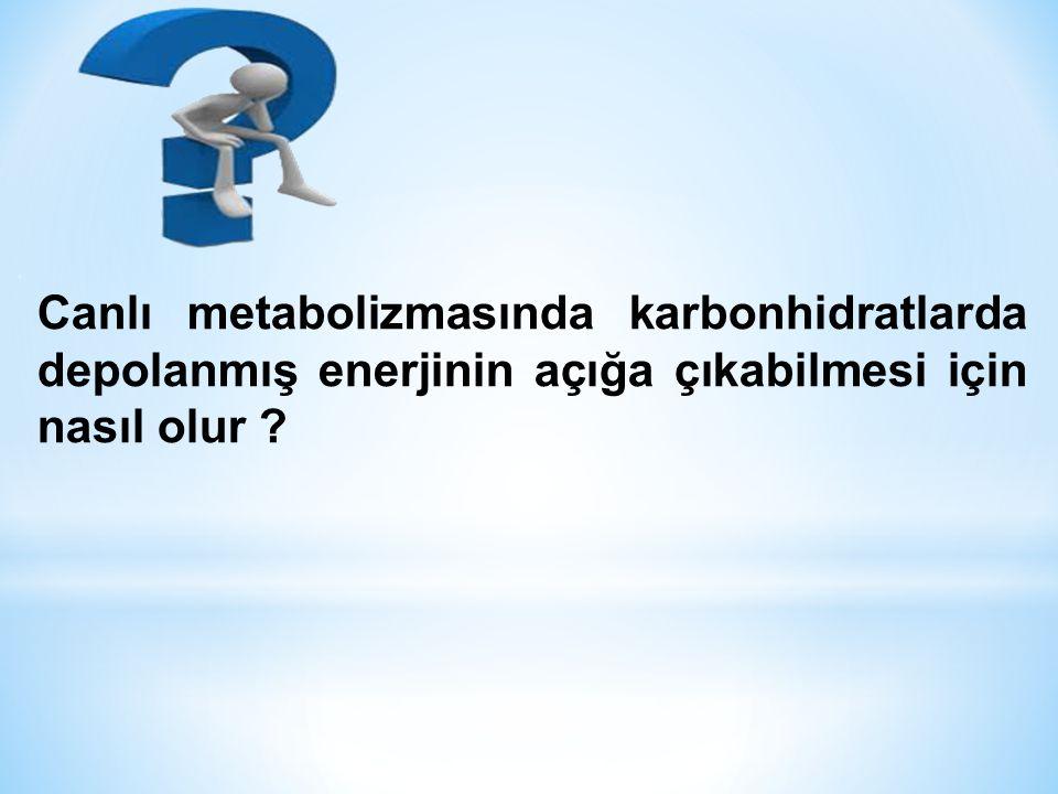 Canlı metabolizmasında karbonhidratlarda depolanmış enerjinin açığa çıkabilmesi için nasıl olur ?