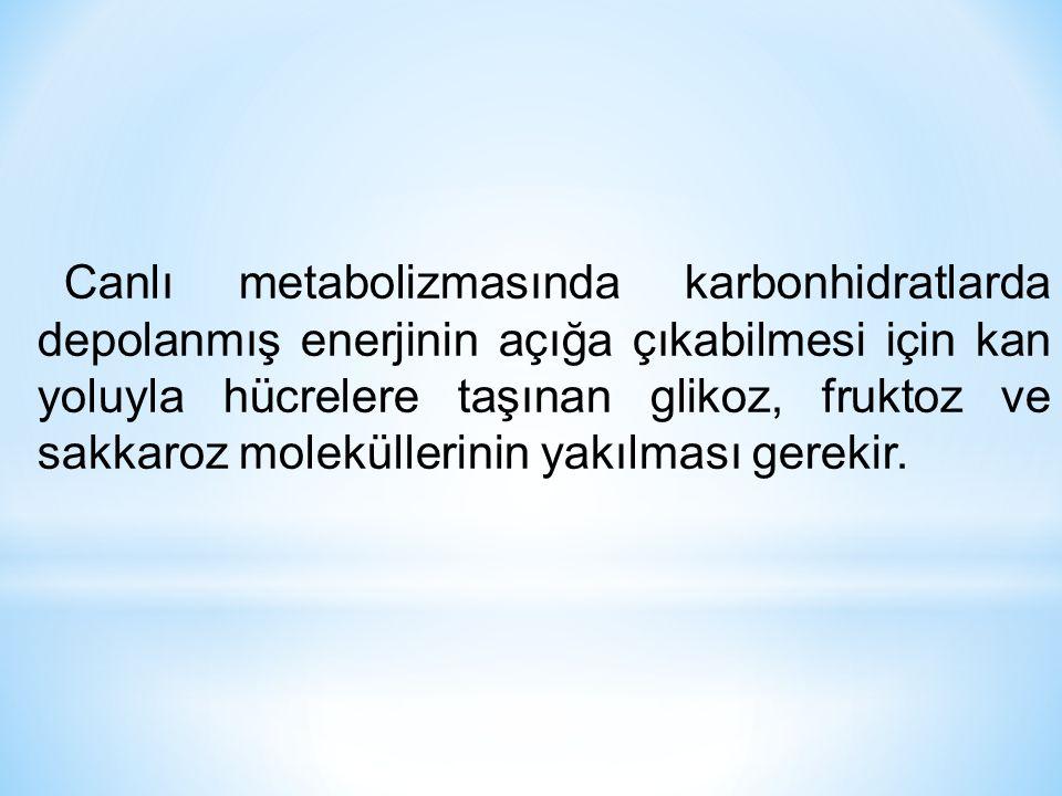 Canlı metabolizmasında karbonhidratlarda depolanmış enerjinin açığa çıkabilmesi için kan yoluyla hücrelere taşınan glikoz, fruktoz ve sakkaroz molekül