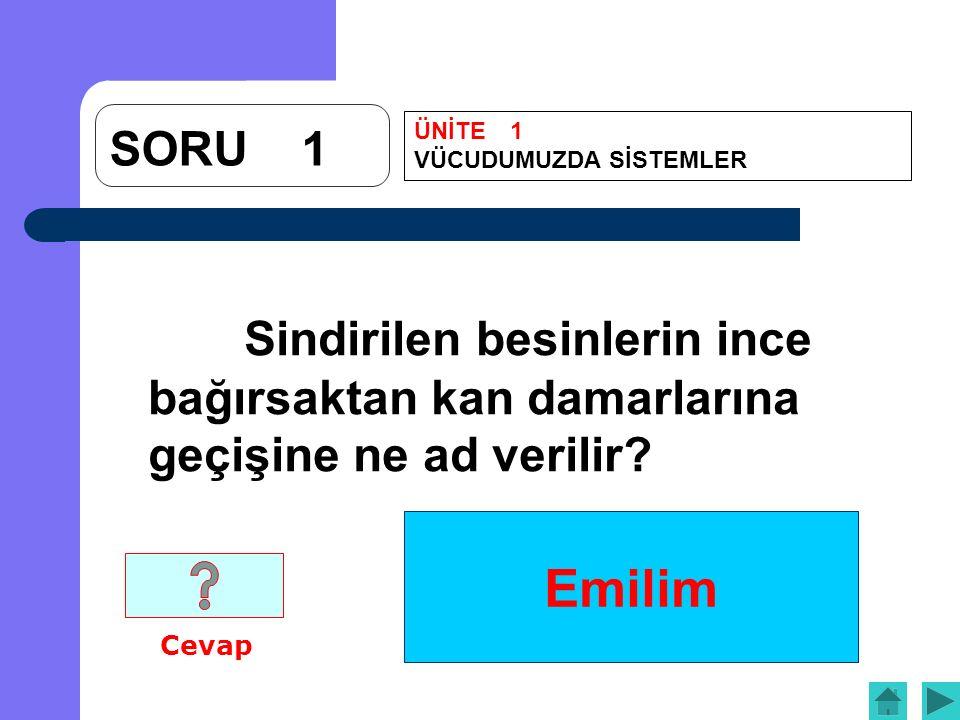 Emilim SORU1 Sindirilen besinlerin ince bağırsaktan kan damarlarına geçişine ne ad verilir.