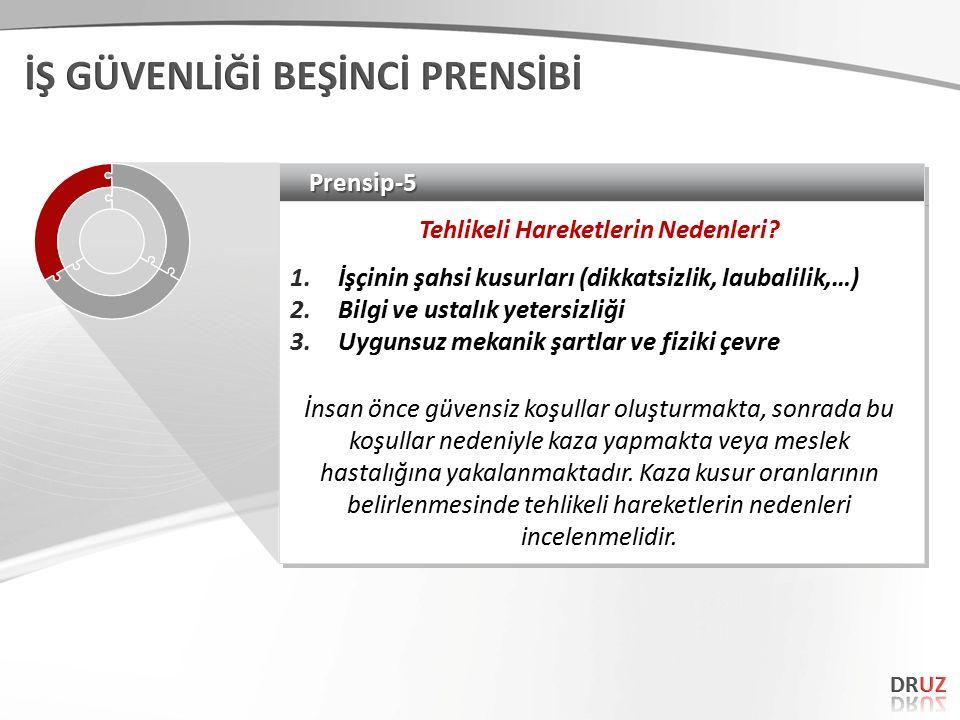 Prensip-5Prensip-5 Tehlikeli Hareketlerin Nedenleri.