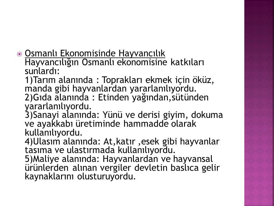  Osmanlı Ekonomisinde Hayvancılık Hayvancılığın Osmanlı ekonomisine katkıları sunlardı: 1)Tarım alanında : Toprakları ekmek için öküz, manda gibi hay