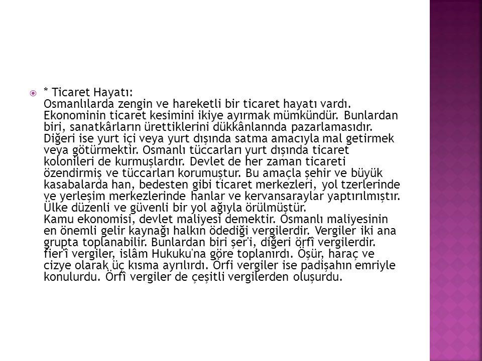   HAZIRLAYAN   BİLAL TOPRAK  11-A/748