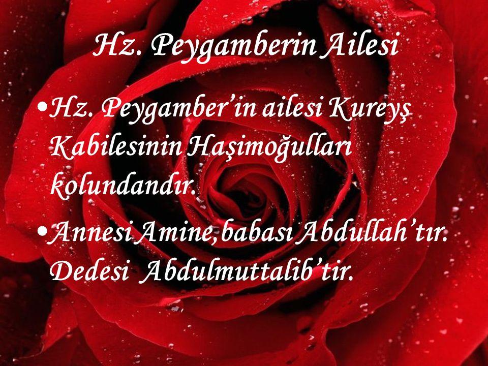 www.hazirslayt.com Hz. Peygamberin Ailesi Hz. Peygamber'in ailesi Kureyş Kabilesinin Haşimoğulları kolundandır. Annesi Amine,babası Abdullah'tır. Dede