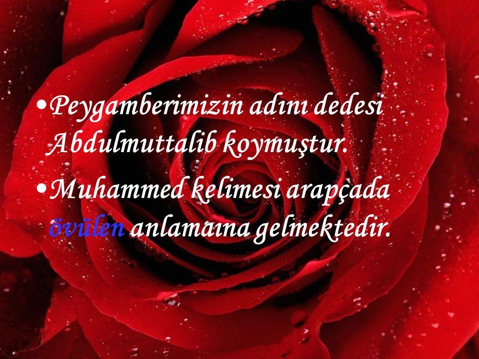 www.hazirslayt.com Peygamberimizin adını dedesi Abdulmuttalib koymuştur. Muhammed kelimesi arapçada övülen anlamaına gelmektedir.