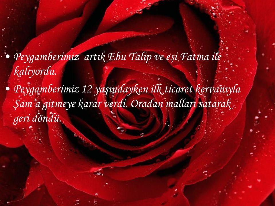www.hazirslayt.com Peygamberimiz artık Ebu Talip ve eşi Fatma ile kalıyordu. Peygamberimiz 12 yaşındayken ilk ticaret kervanıyla Şam'a gitmeye karar v