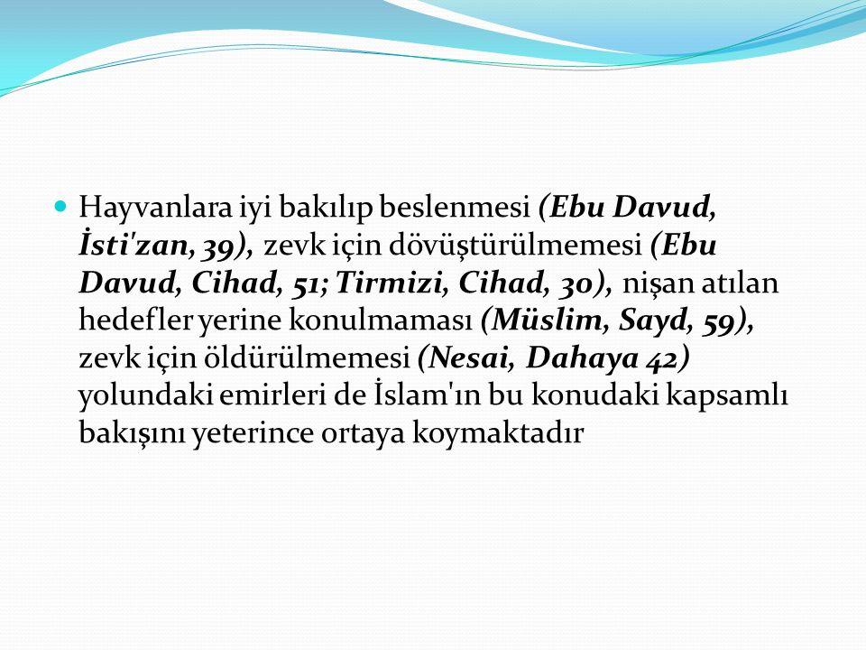 Hayvanlara iyi bakılıp beslenmesi (Ebu Davud, İsti zan, 39), zevk için dövüştürülmemesi (Ebu Davud, Cihad, 51; Tirmizi, Cihad, 30), nişan atılan hedefler yerine konulmaması (Müslim, Sayd, 59), zevk için öldürülmemesi (Nesai, Dahaya 42) yolundaki emirleri de İslam ın bu konudaki kapsamlı bakışını yeterince ortaya koymaktadır