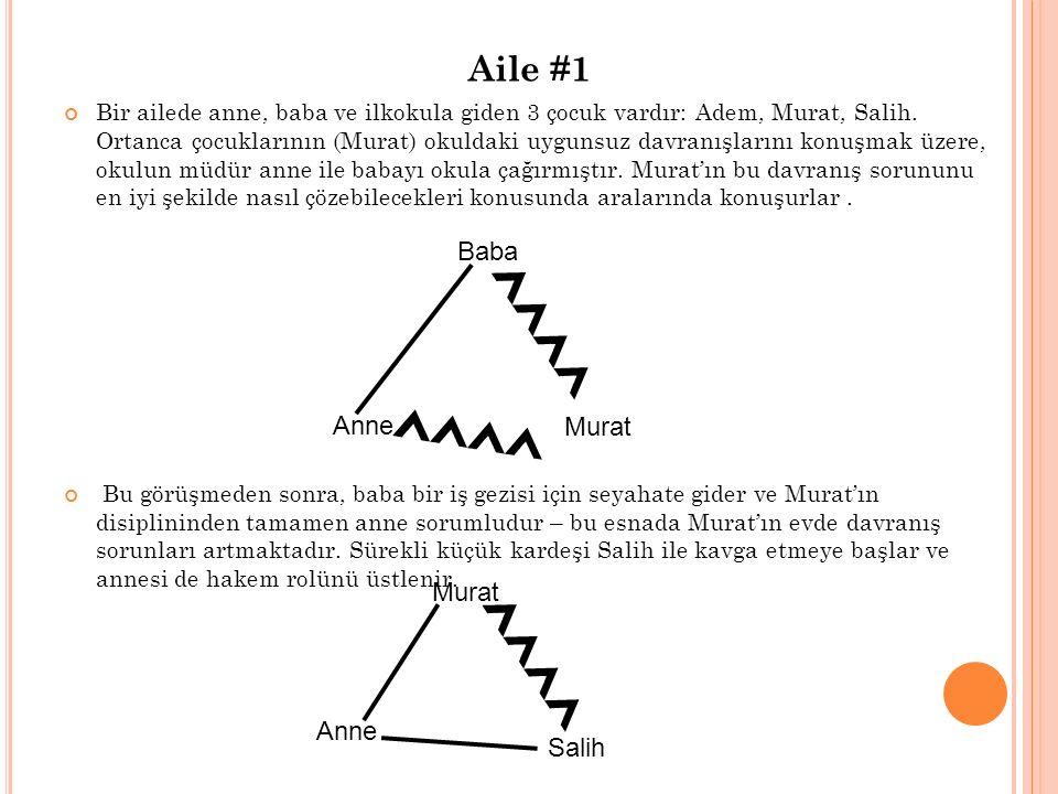 Aile #1 Bir ailede anne, baba ve ilkokula giden 3 çocuk vardır: Adem, Murat, Salih.