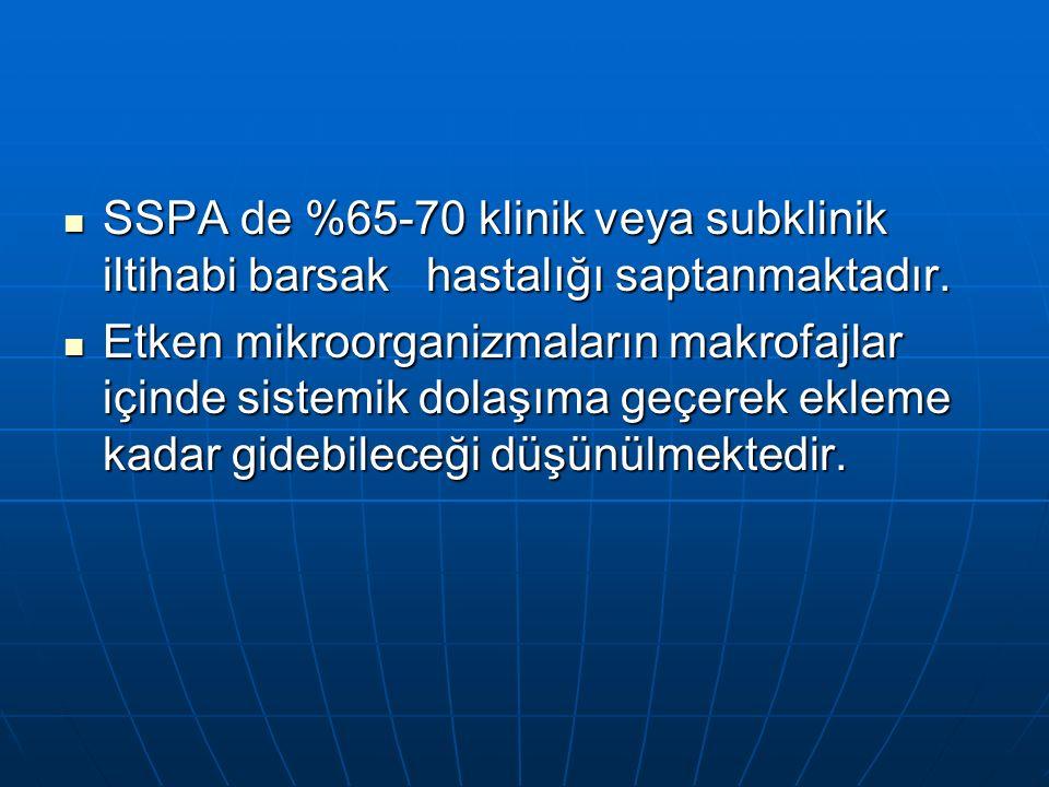 SSPA de %65-70 klinik veya subklinik iltihabi barsak hastalığı saptanmaktadır.