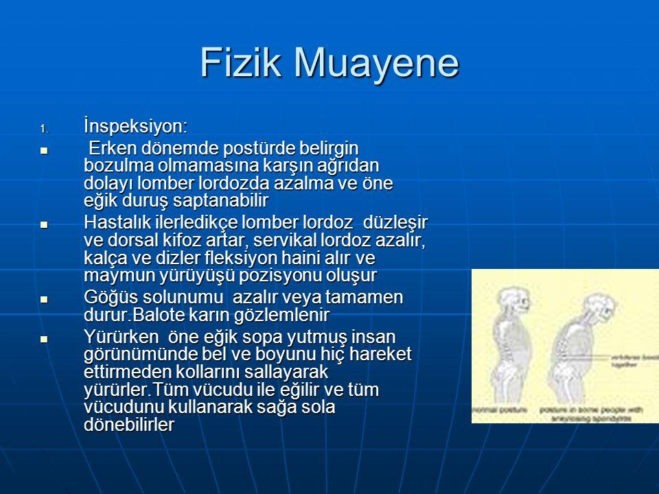 Fizik Muayene 1.