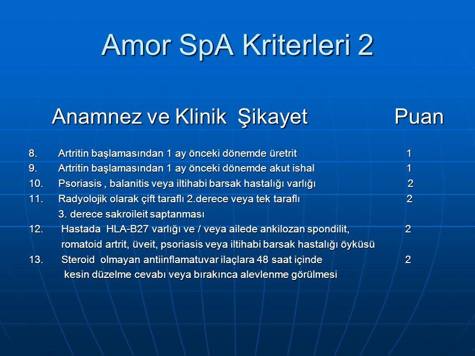 Amor SpA Kriterleri 2 Anamnez ve Klinik Şikayet Puan Anamnez ve Klinik Şikayet Puan 8.