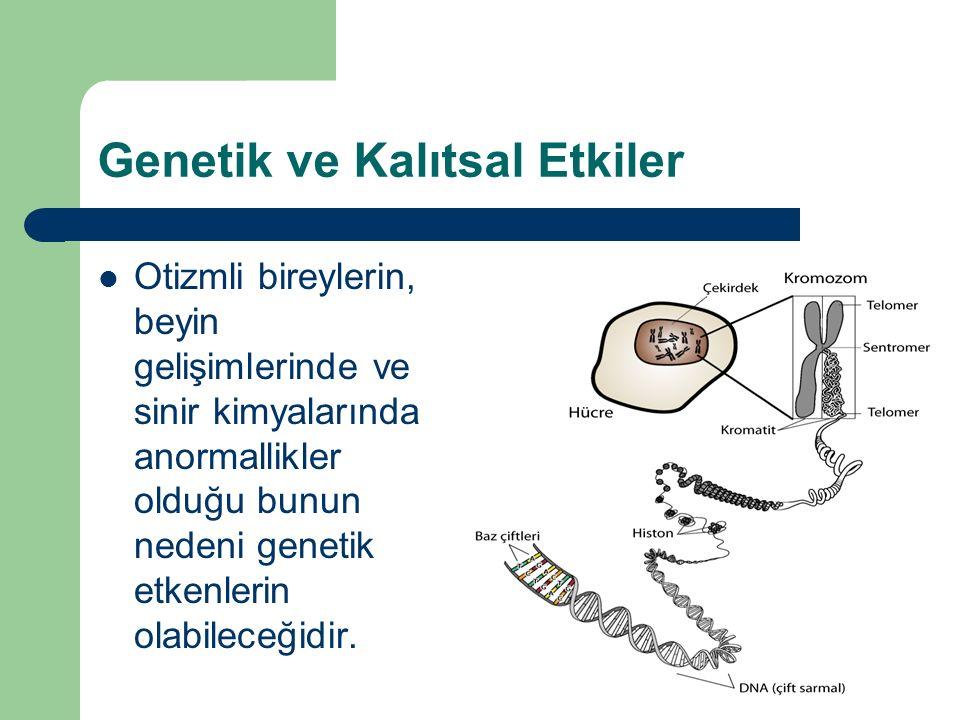 Genetik ve Kalıtsal Etkiler Otizmli bireylerin, beyin gelişimlerinde ve sinir kimyalarında anormallikler olduğu bunun nedeni genetik etkenlerin olabileceğidir.
