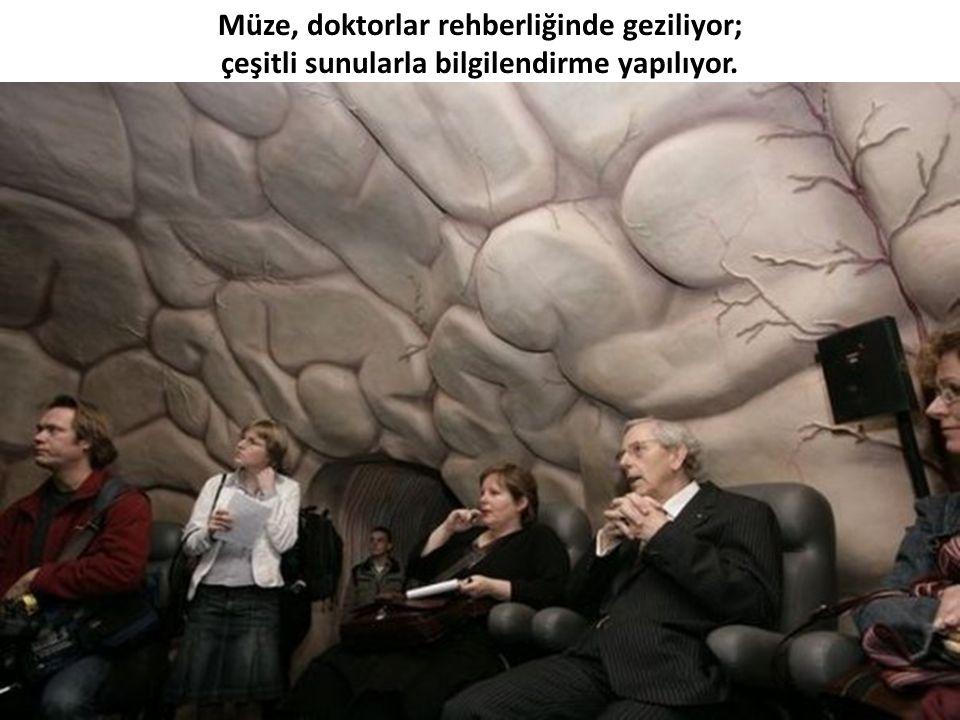Aynur Çakır 2008