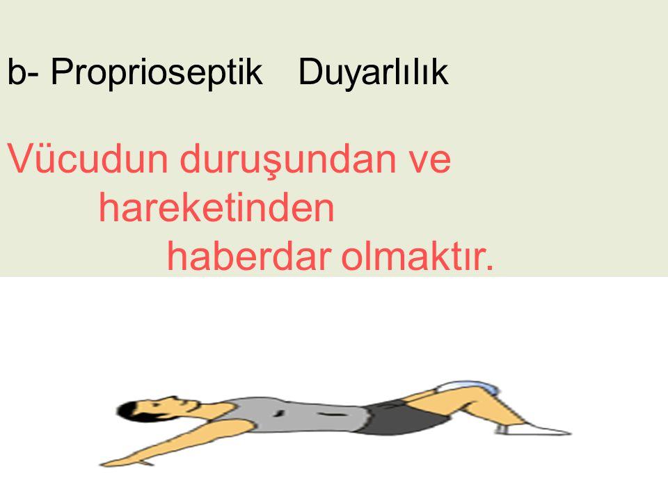 b- Proprioseptik Duyarlılık Vücudun duruşundan ve hareketinden haberdar olmaktır.