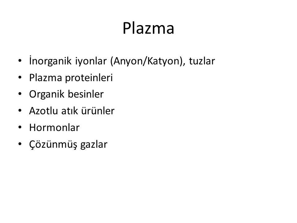 Plazma İnorganik iyonlar (Anyon/Katyon), tuzlar Plazma proteinleri Organik besinler Azotlu atık ürünler Hormonlar Çözünmüş gazlar