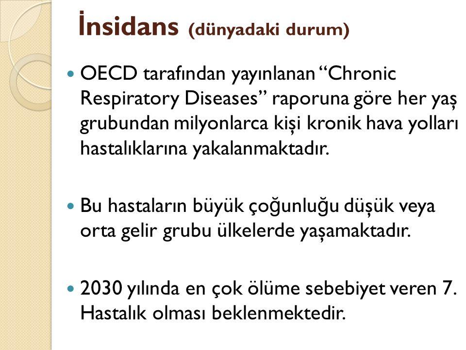 """İ nsidans (dünyadaki durum) OECD tarafından yayınlanan """"Chronic Respiratory Diseases"""" raporuna göre her yaş grubundan milyonlarca kişi kronik hava yol"""