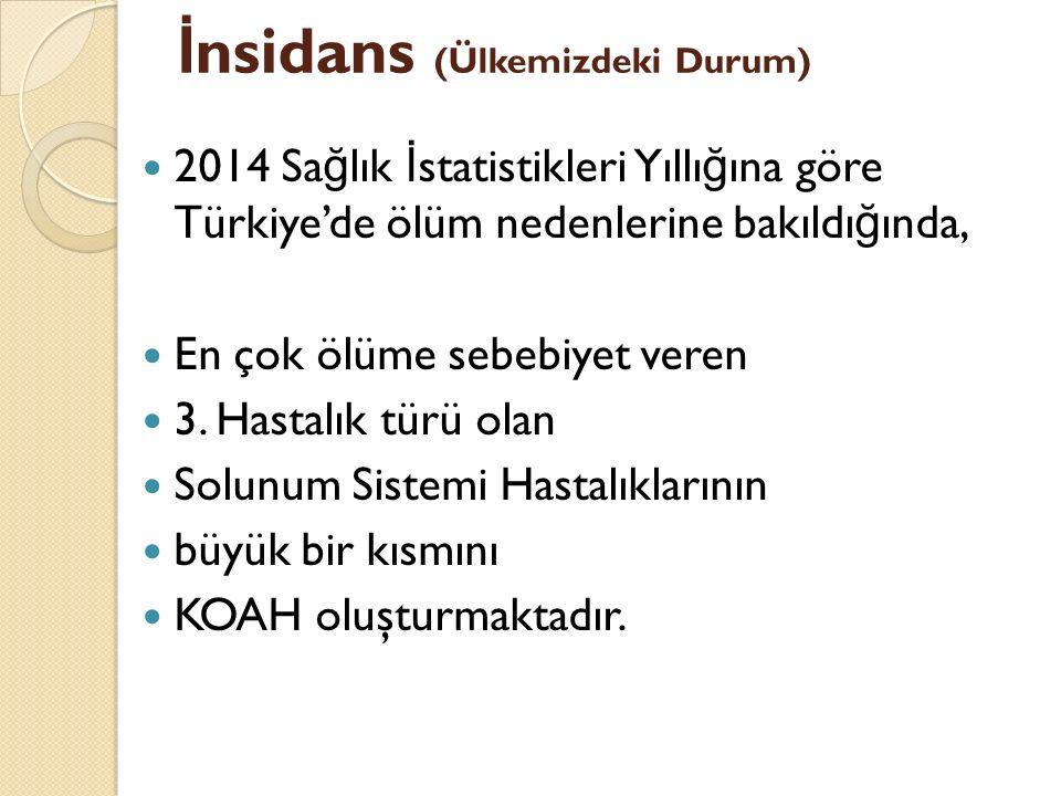 İ nsidans (Ülkemizdeki Durum) 2014 Sa ğ lık İ statistikleri Yıllı ğ ına göre Türkiye'de ölüm nedenlerine bakıldı ğ ında, En çok ölüme sebebiyet veren