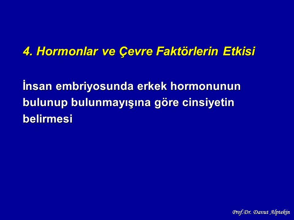 4. Hormonlar ve Çevre Faktörlerin Etkisi İnsan embriyosunda erkek hormonunun bulunup bulunmayışına göre cinsiyetin belirmesi Prof.Dr. Davut Alptekin
