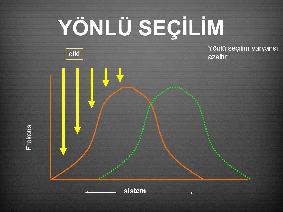 YÖNLÜ SEÇİLİM Frekans etki sistem Yönlü seçilim varyansı azaltır.
