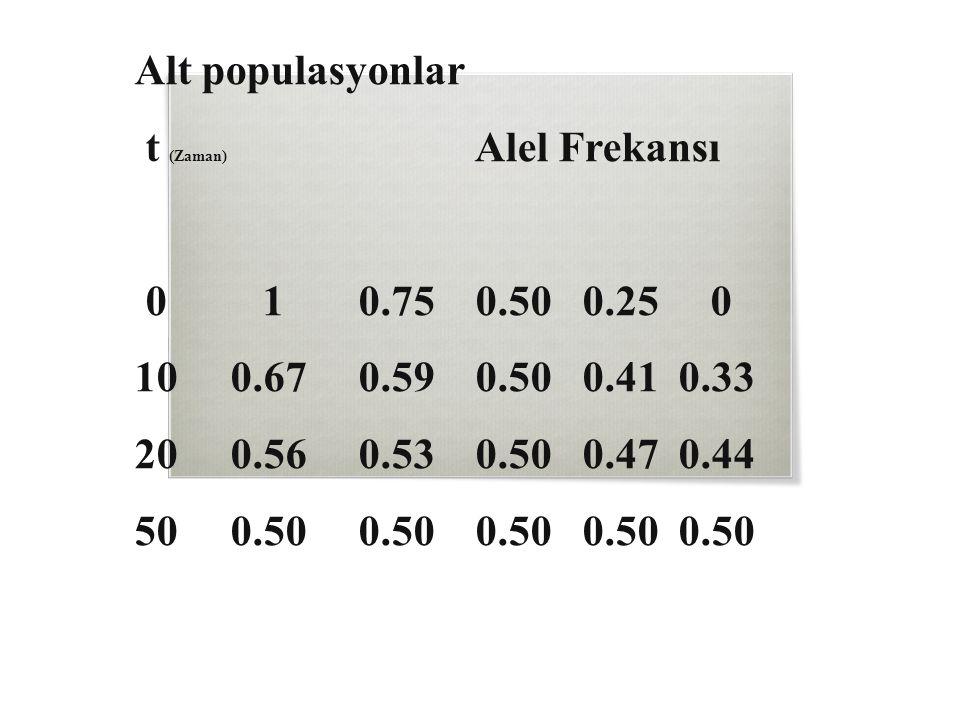 Alt populasyonlar t (Zaman) Alel Frekansı 0 1 0.75 0.50 0.25 0 10 0.67 0.59 0.50 0.41 0.33 20 0.56 0.53 0.50 0.47 0.44 50 0.50 0.50 0.50 0.50 0.50