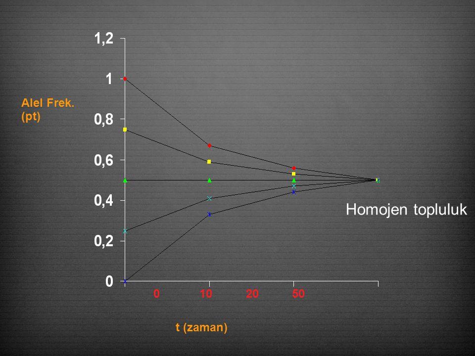 0 10 20 50 t (zaman) Alel Frek. (pt) Homojen topluluk