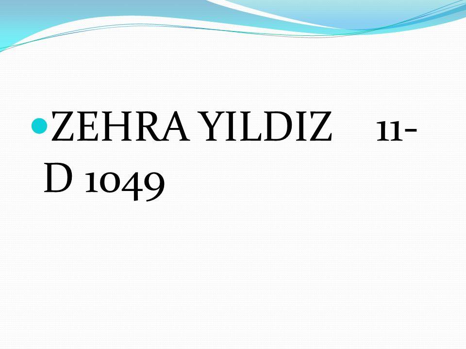 ZEHRA YILDIZ 11- D 1049