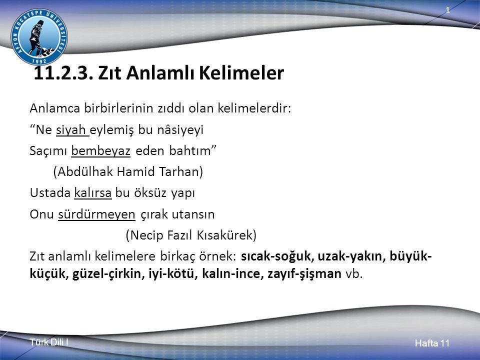 Türk Dili I Hafta 11 1 11.2.3.