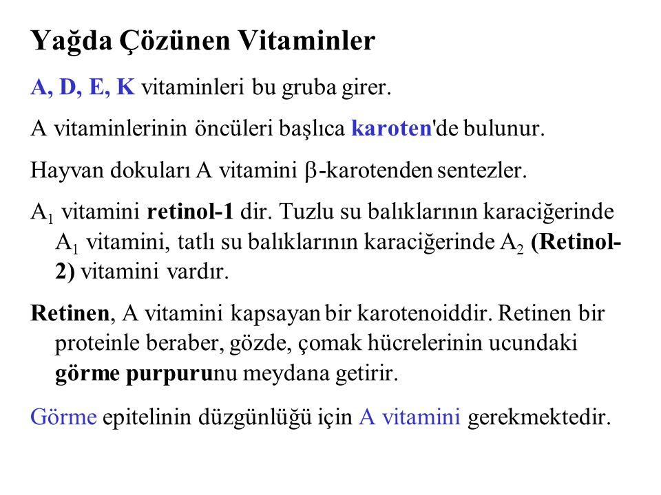 Yağda Çözünen Vitaminler A, D, E, K vitaminleri bu gruba girer. A vitaminlerinin öncüleri başlıca karoten'de bulunur. Hayvan dokuları A vitamini  -ka