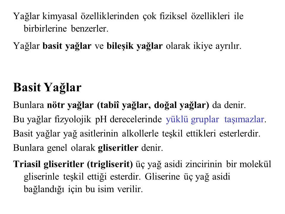 Triasil gliserid (trigliserit), doymuş bir yağ. Ester bağı Gliserol (Gliserin) Palmitik asit