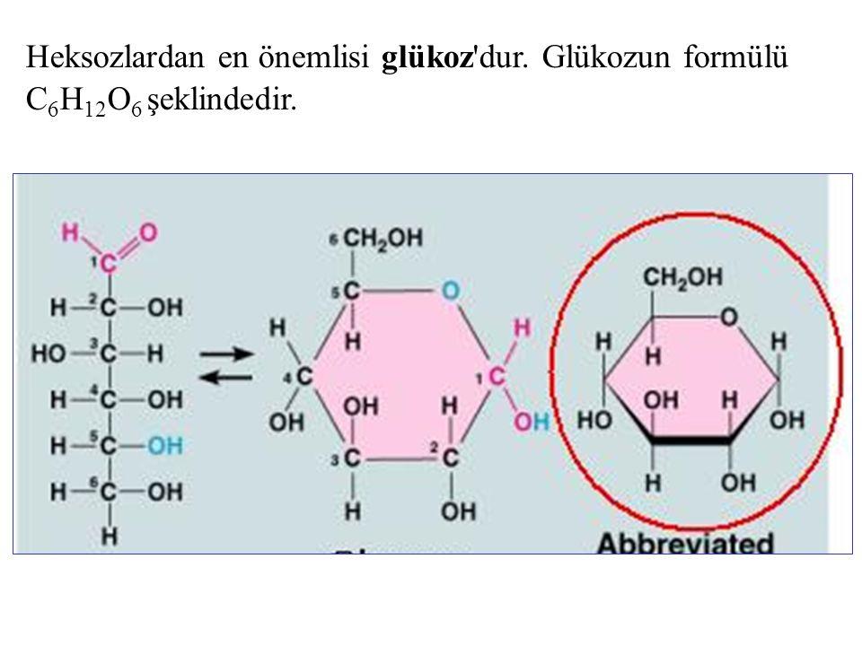 Heksozlardan en önemlisi glükoz'dur. Glükozun formülü C 6 H 12 O 6 şeklindedir.