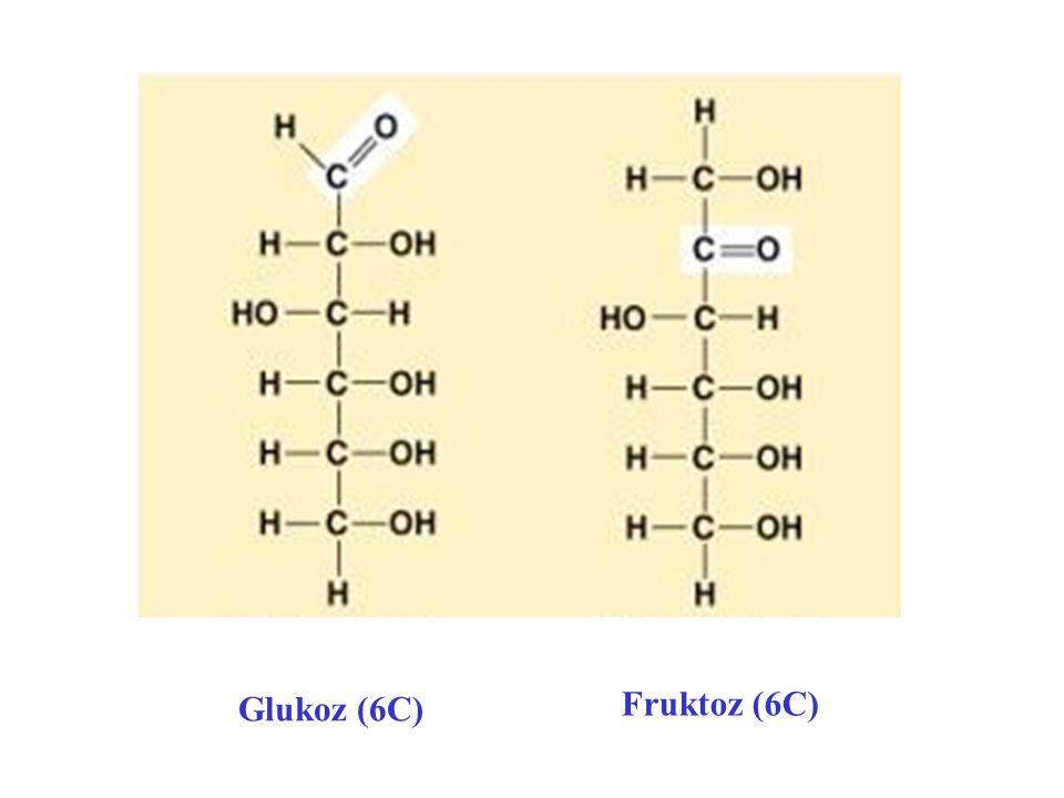 O O CH 2 OH OH Glukoz (6C) ve Fruktoz (6C)