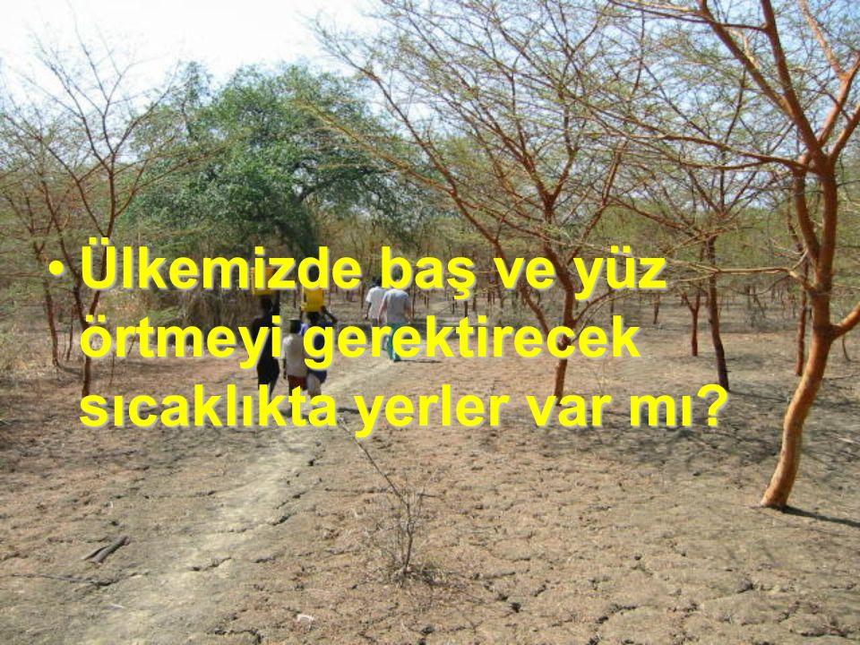 Tuaregler kendilerinin ve hayvanların çöldeki su ihtiyaçlarını çok az olan su kuyularından karşılarlar.Tuaregler kendilerinin ve hayvanların çöldeki su ihtiyaçlarını çok az olan su kuyularından karşılarlar.