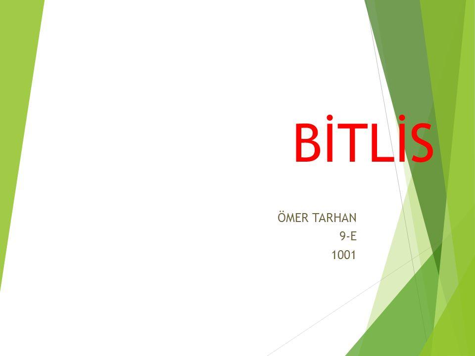 BİTLİS ÖMER TARHAN 9-E 1001