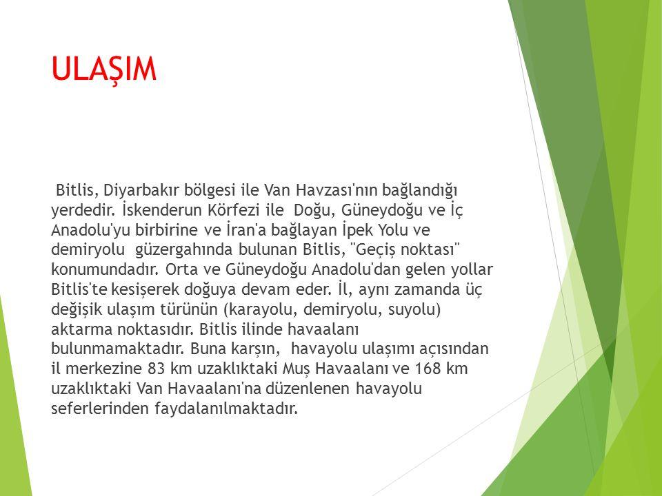 ULAŞIM Bitlis, Diyarbakır bölgesi ile Van Havzası nın bağlandığı yerdedir.