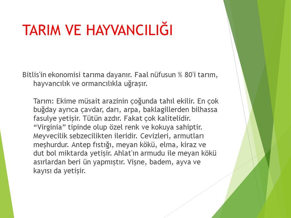 TARIM VE HAYVANCILIĞI Bitlis in ekonomisi tarıma dayanır.