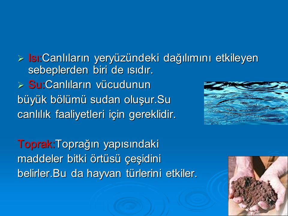  Isı:Canlıların yeryüzündeki dağılımını etkileyen sebeplerden biri de ısıdır.