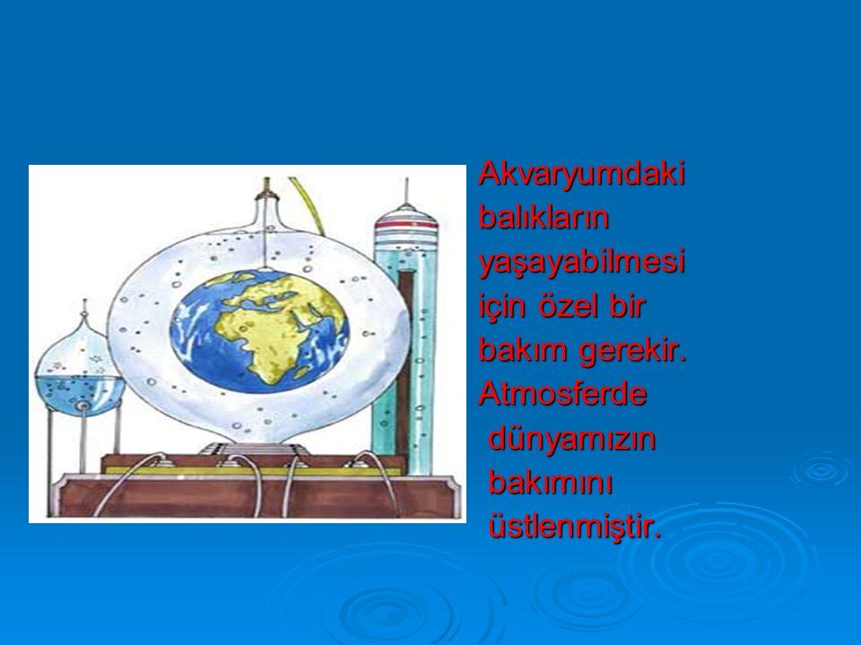 Su Küre(Hidrosfer)  Su küreyi okyanuslar, denizler,göller ve nehirler oluşturur.