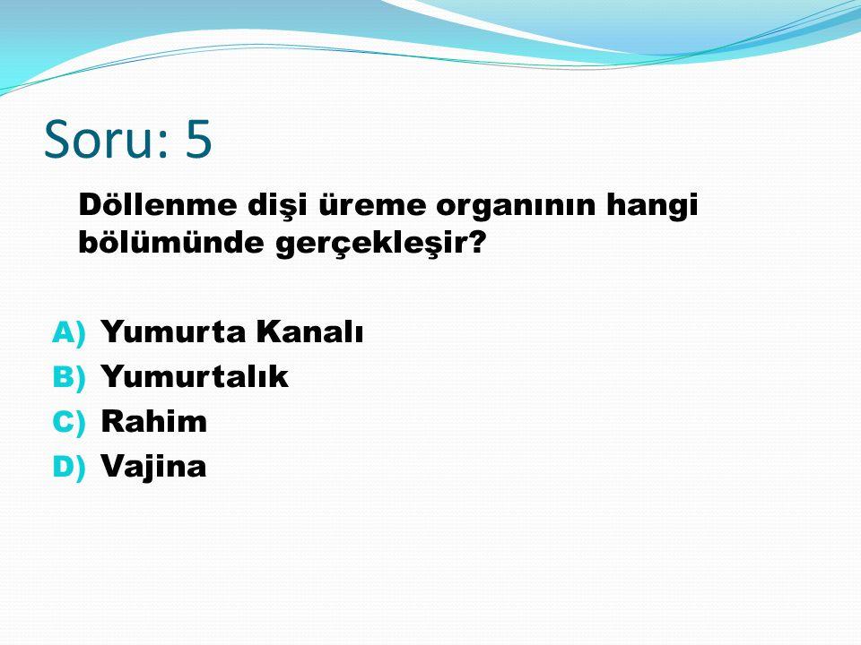 Soru: 5 Döllenme dişi üreme organının hangi bölümünde gerçekleşir.