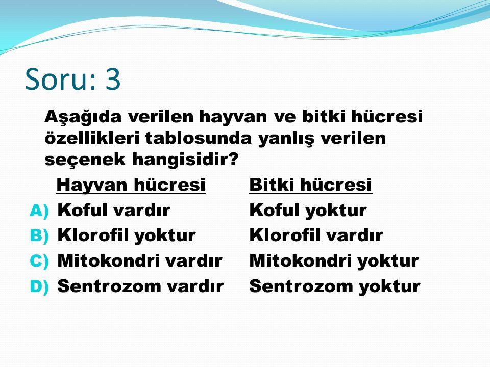 Soru: 3 Aşağıda verilen hayvan ve bitki hücresi özellikleri tablosunda yanlış verilen seçenek hangisidir.