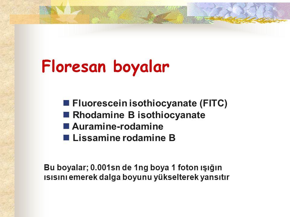 Floresan boyalar Fluorescein isothiocyanate (FITC) Rhodamine B isothiocyanate Auramine-rodamine Lissamine rodamine B Bu boyalar; 0.001sn de 1ng boya 1 foton ışığın ısısını emerek dalga boyunu yükselterek yansıtır